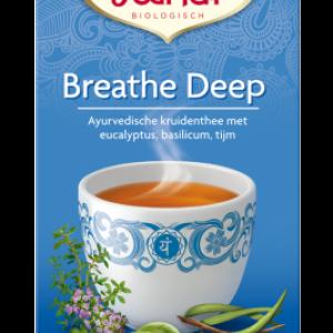 yogi thee