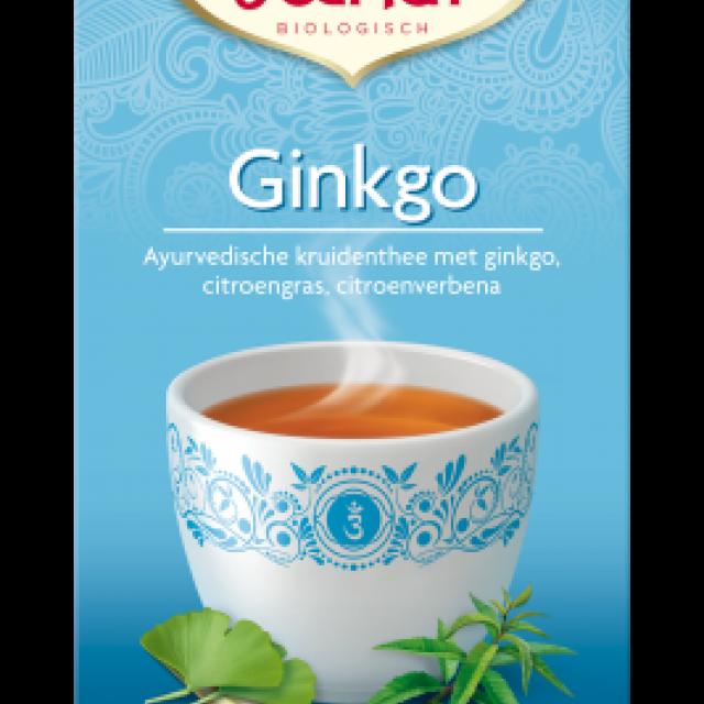 ginko - yogi thee
