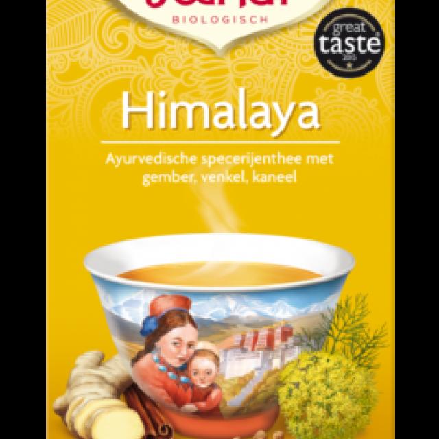 himalaya - yogi thee