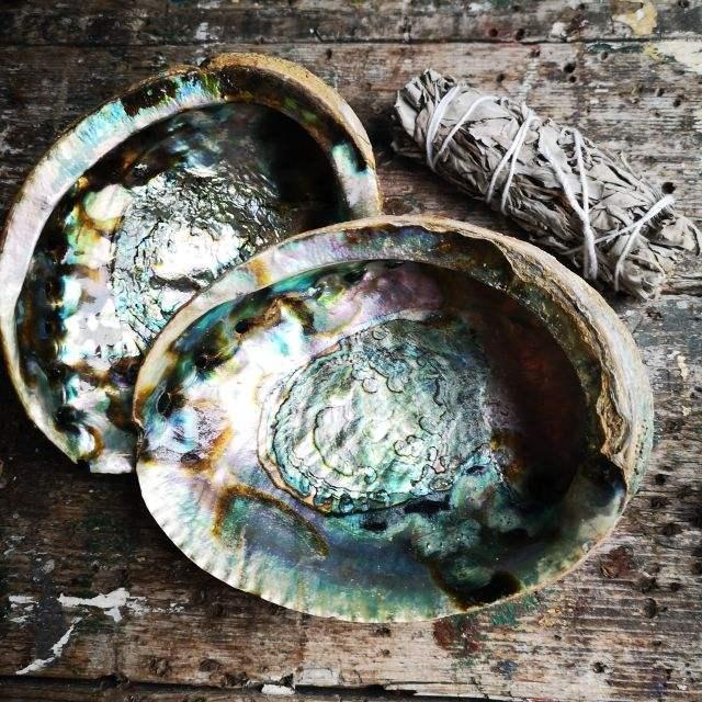 abalone - wierookhouder